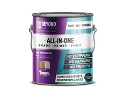 Beyond Paint All-In-One